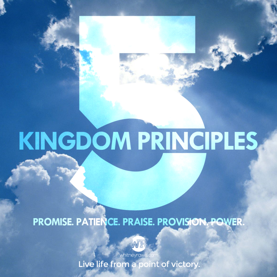 5-kingdom-principles